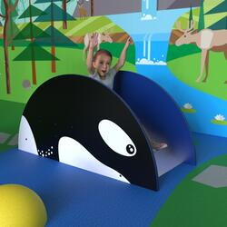 This image shows a play system orca slide